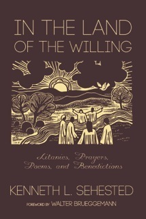 In the Land of the Willing: Litanies, Prayers, Poems, and Benedictions